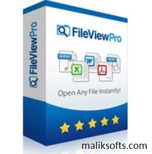 FileViewPro Crack + License Key 2020 Free Download